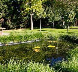 Naturoscope-bassin-pedagogique