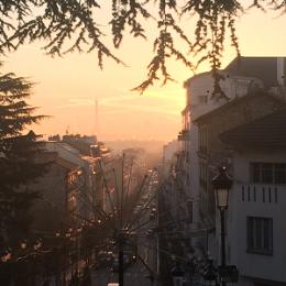photo-blog-smog-helena